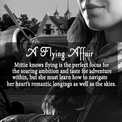 A Flying Affair_3